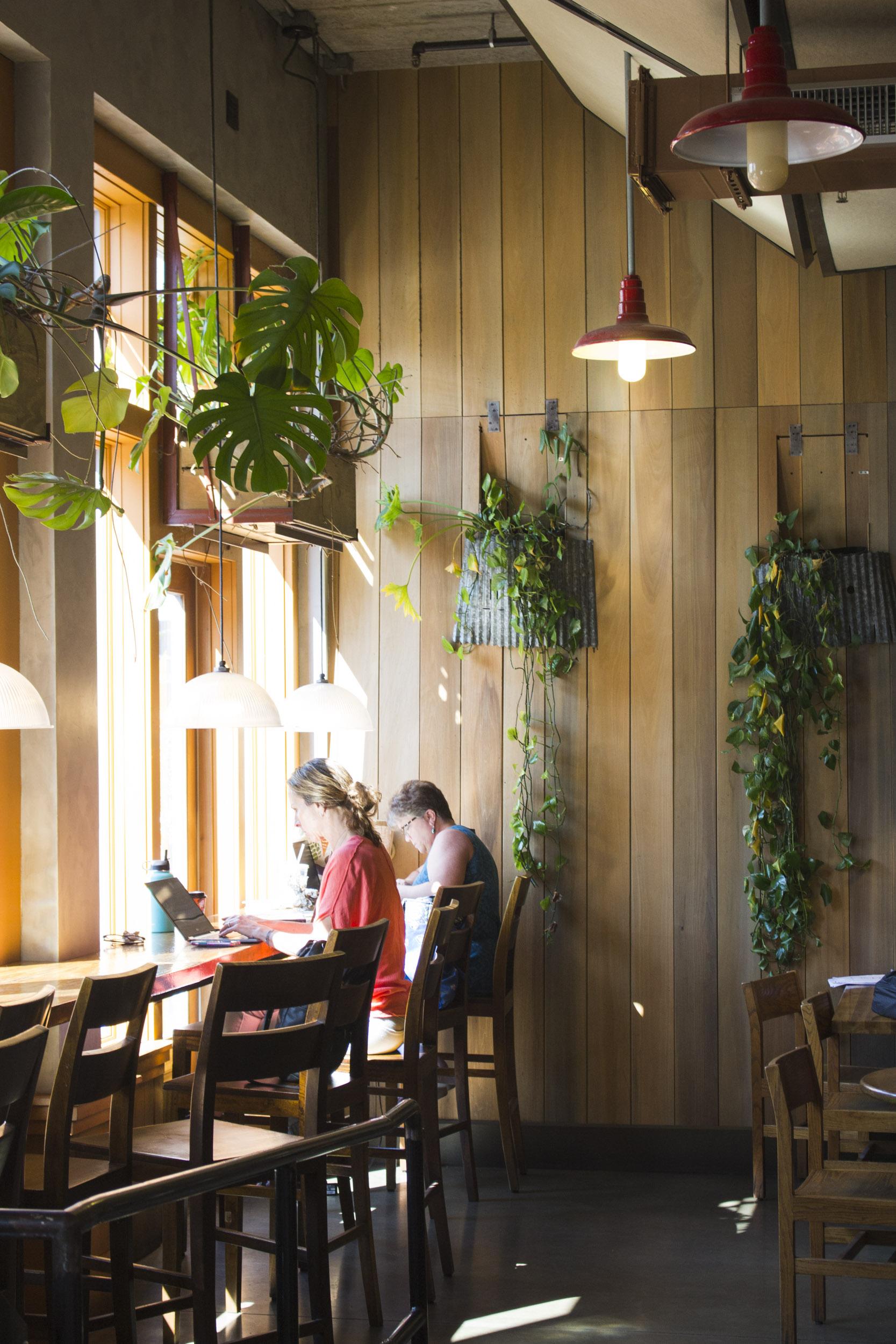 Colectivo Coffee | The Cornerstone